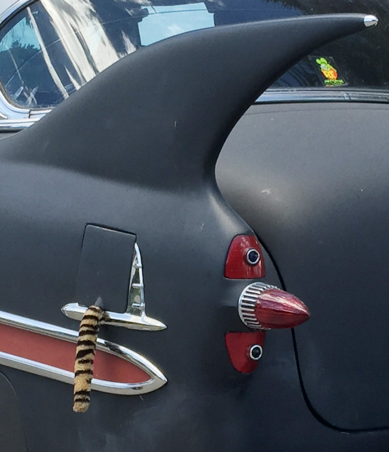Fins on 53 Chevy Custom finished