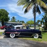"1953 Chevy Hot Rod Custom Belair ""Stardust"" in the sun with palm tree"